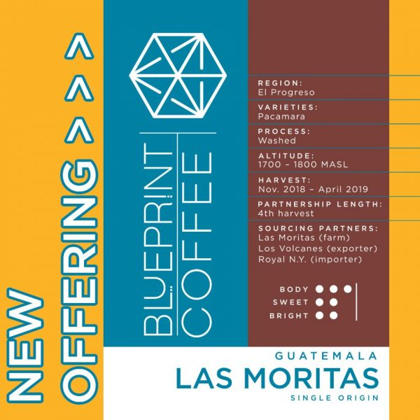 Las Moritas coffee from Guatemala - roasted by Blueprint Coffee.