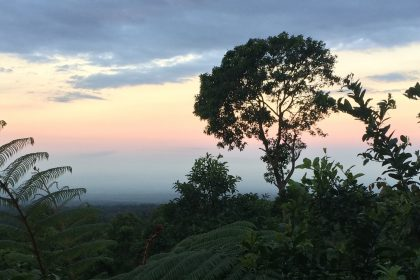 a serene sunset at finca esperanza in cerro pecul, guatemala