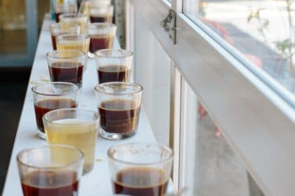 Cupping at Blueprint Coffee Watson